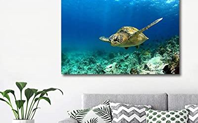 10 Under The Sea Decorations You Need To Know