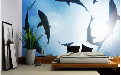6 Shark Wall Mural Facts You Need to See!