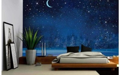 5 Star Wall Mural Facts That Will Amaze You!