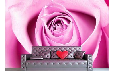 5 Interesting Rose Wall Mural Facts You'll Love!