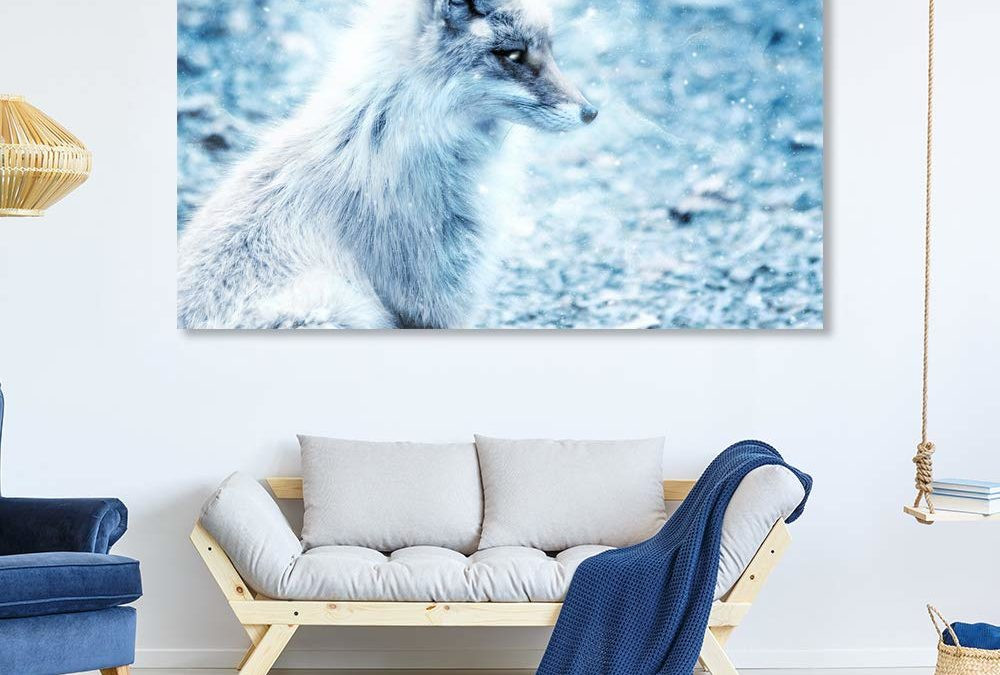5 Fox Wall Art Facts You Will Be Amazed By!