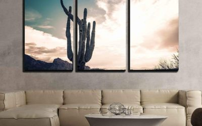 10 Cactus Themed Room Examples You Will Love!