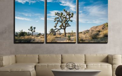 7 Desert Modern Decor Ideas That You Will Simply Love!