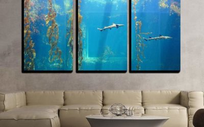 10 Under The Sea Decorations That Will Give Your Room Charm!